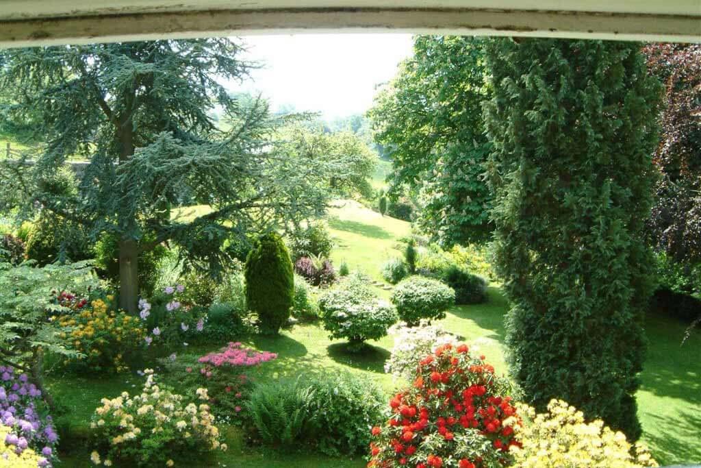 Blue garden view