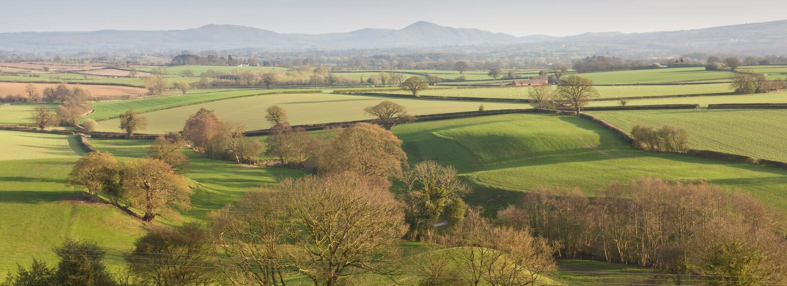 tourist attractions in shropshire