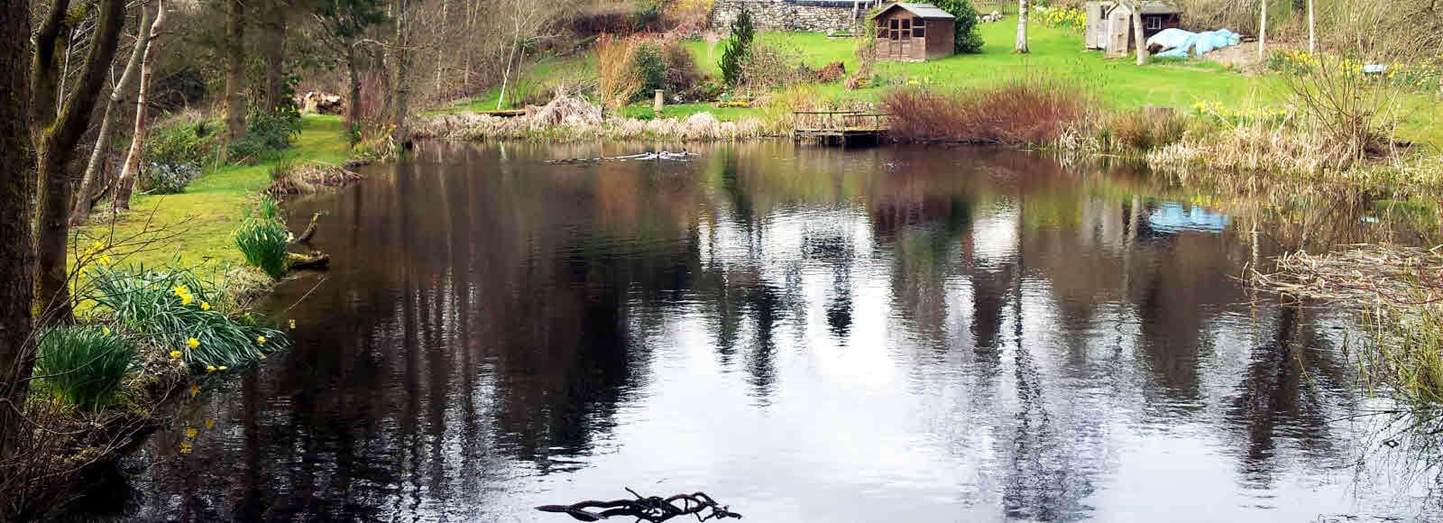 Fishing At Hotel Pen Y Dyffryn Country Hotel In Shropshire